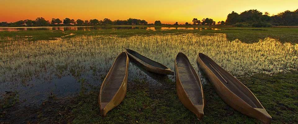 Dugout canoes. Botswana, Africa.