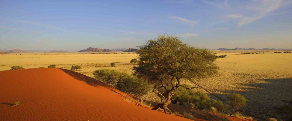 View of a the desert. Namibia, Africa