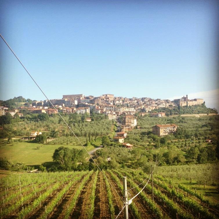 Tuscan farm land and village.