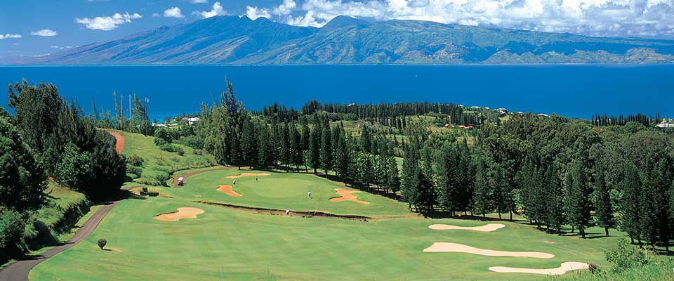 Golf course with pine trees and mountain view. Maui, Hawaii.