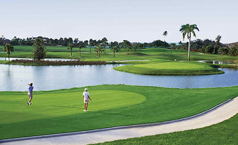 Golf course with golfers. The Bahamas.