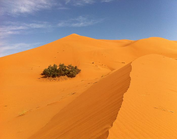 Desert sand near Morocco.