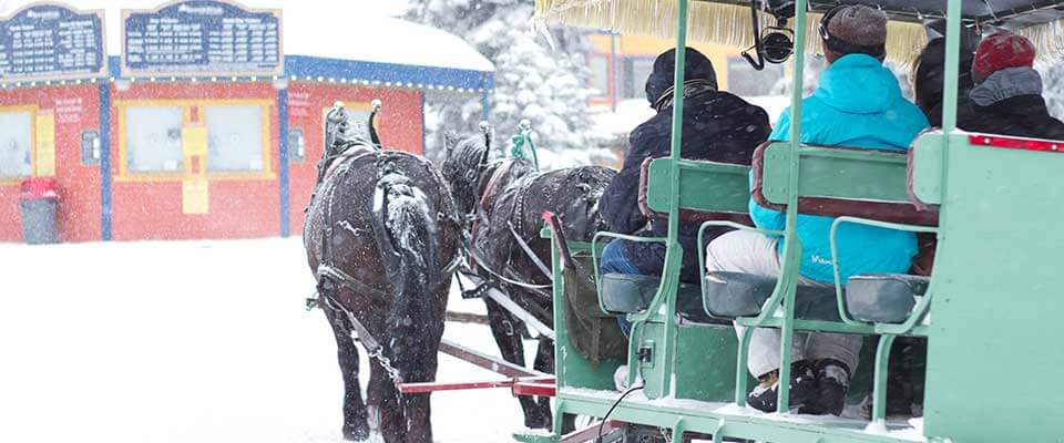 Horse drawn carriage ride. Silver Star, BC.