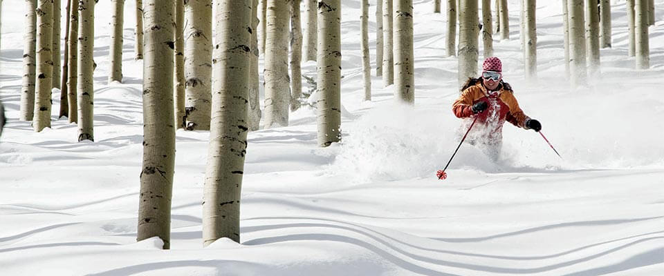 Skiing in fresh powder snow through trees. Park City, Utah.