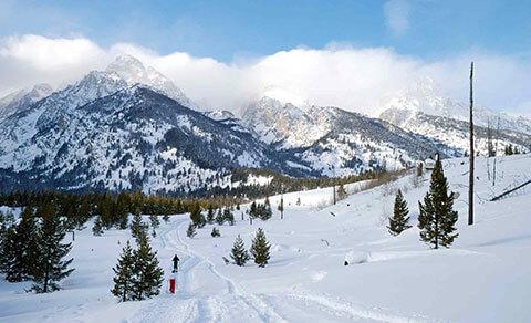 Ski trails in fresh snow. Wyoming.
