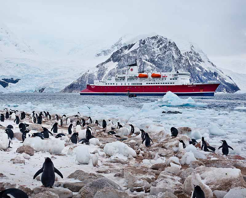 Adv-Polar-Regions-Antarctica-Antarctica-Classic-800