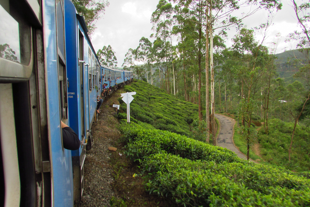 Sheryl-Sri-Lanka (2)