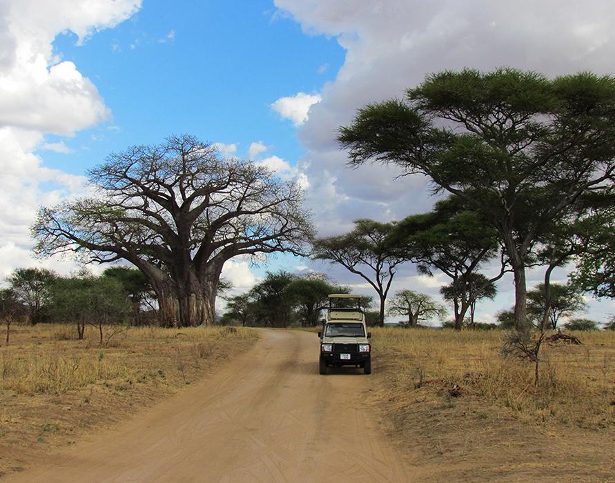 Tanzania-Laura-Main-9