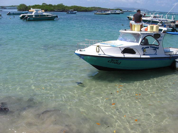 Laura-Main-Galapagos-10