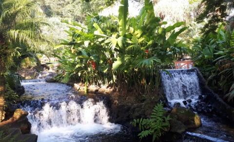 Natural thermal springs – Tabacon Resort & Spa