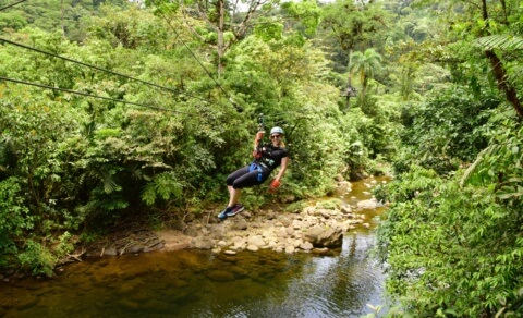 Zip-lining – Braulio Carillo National Park