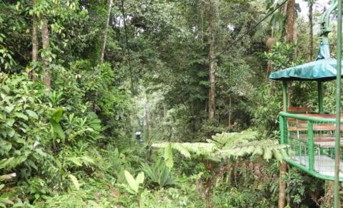 Rainforest aerial tram - Braulio Carillo National Park
