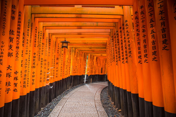 Kyoto Fushimi Inari-Taisha 1000 Torii Gates in Japan. Courtesy G Adventures